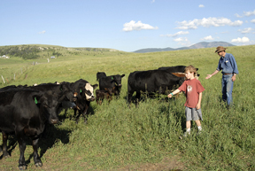 Anderson  family members feeding their herd